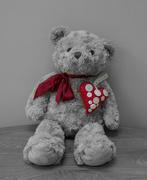 14th Feb 2021 - Teddy with a big heart
