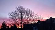 13th Feb 2021 - Sunrise