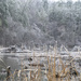 Ice Storm '21 - Beaver Lodge