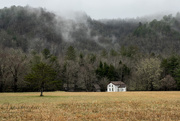 13th Feb 2021 - Cades Cove, Great Smoky Mountains