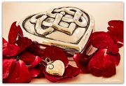 14th Feb 2021 - My loves..