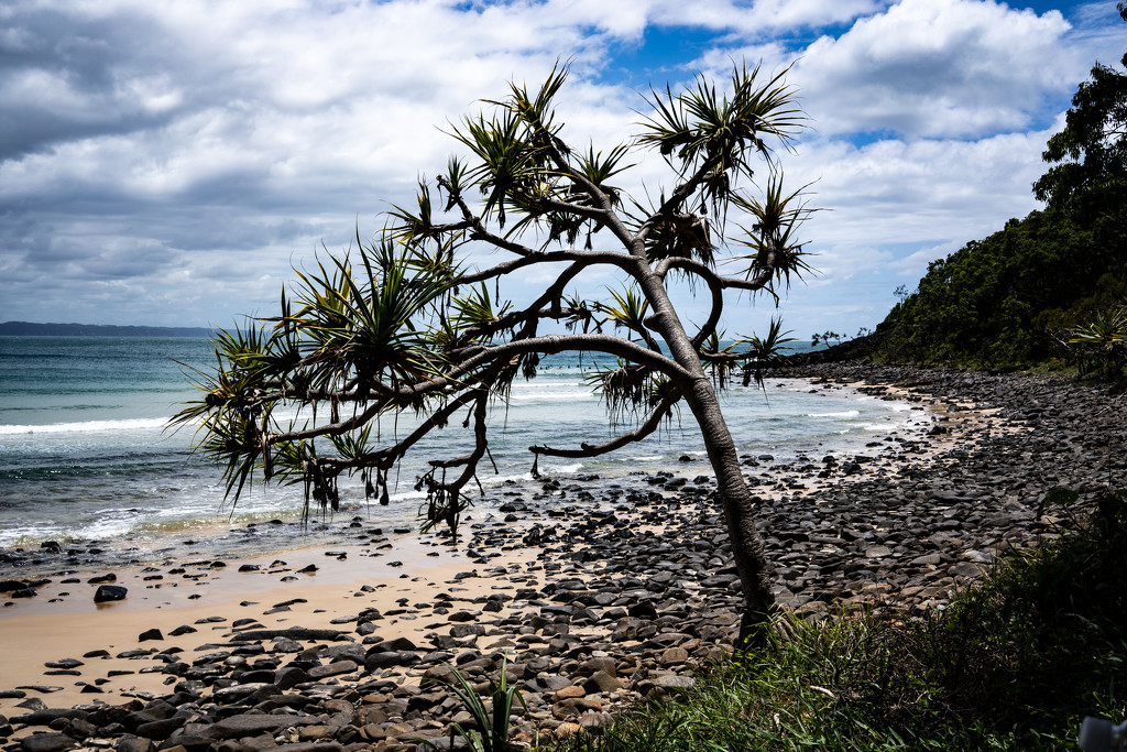 Noosa beach by sugarmuser