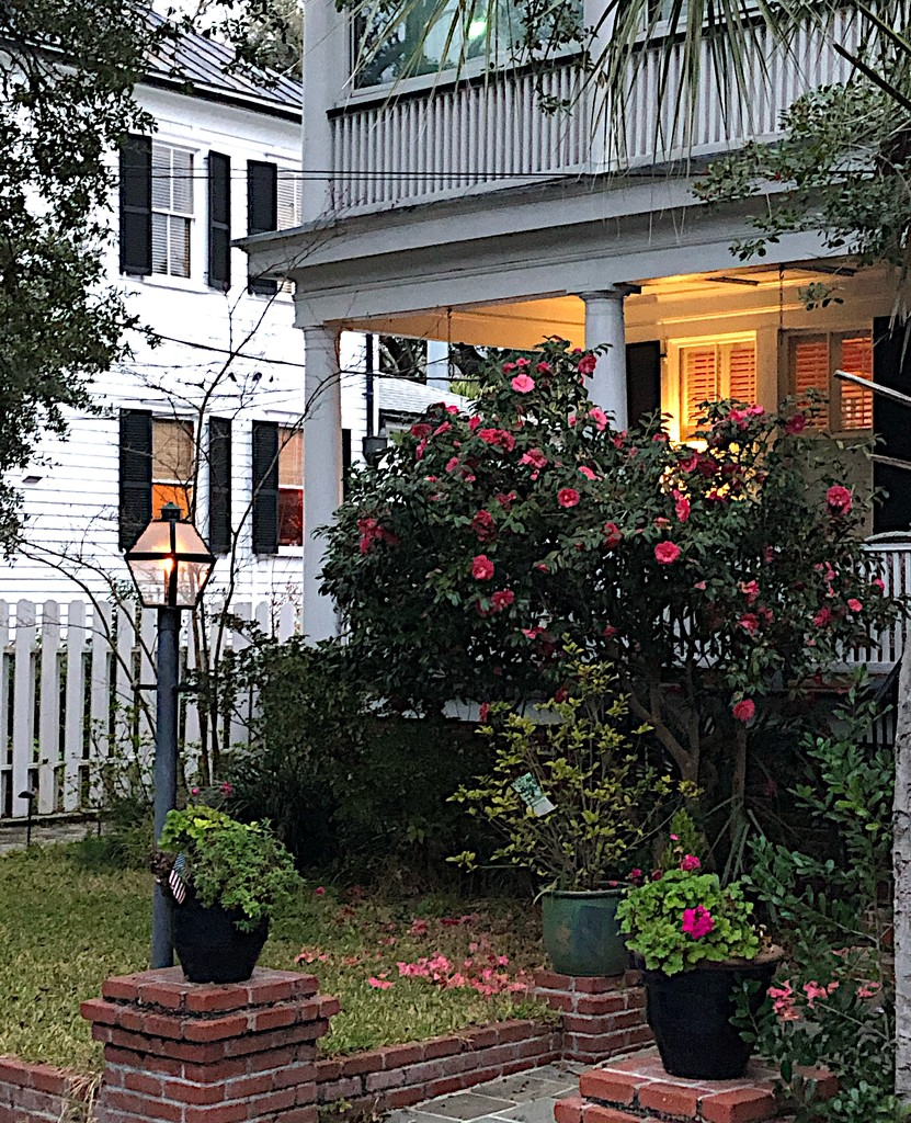 Charleston historic district by congaree