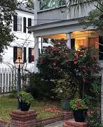 16th Feb 2021 - Charleston historic district