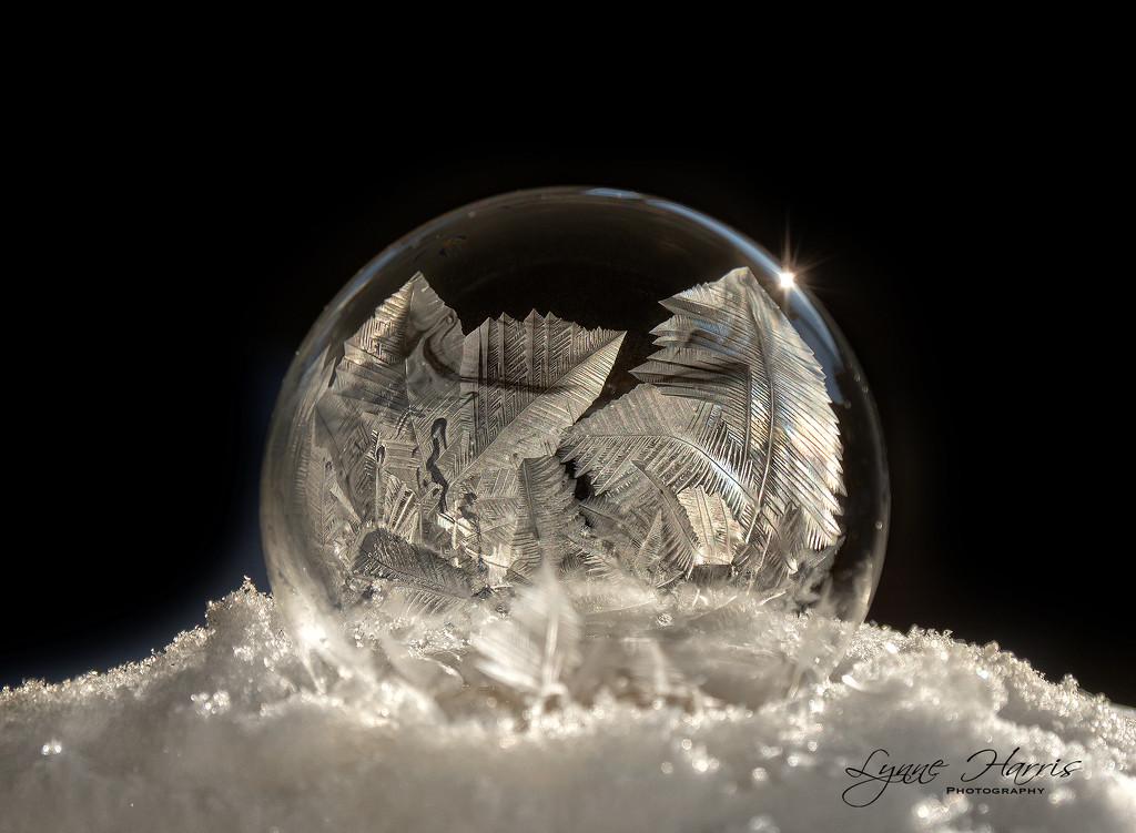 Frozen Bubble III by lynne5477