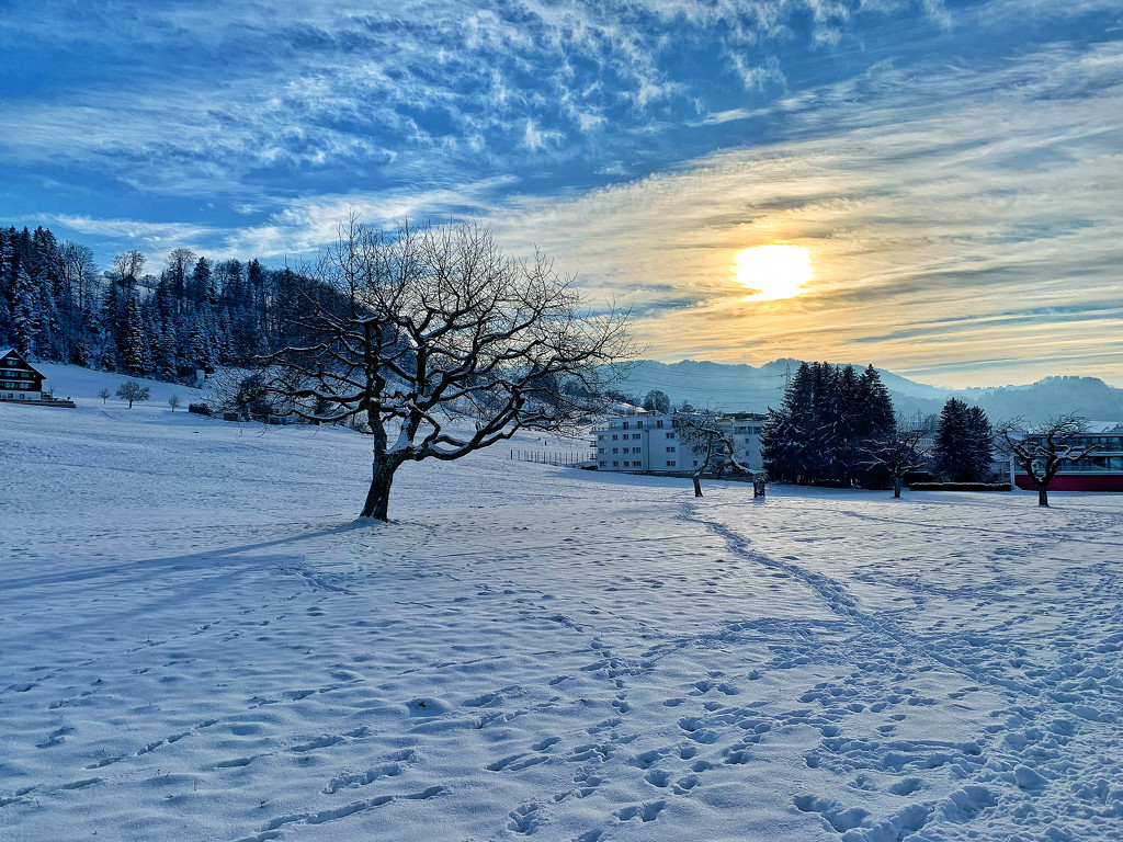 Sunset above the snow.  by cocobella