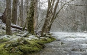 16th Feb 2021 - Little River, Smoky Mountains