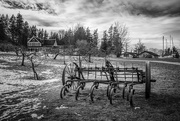 16th Feb 2021 - Stewart Farm