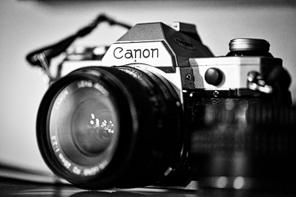 canon by adi314