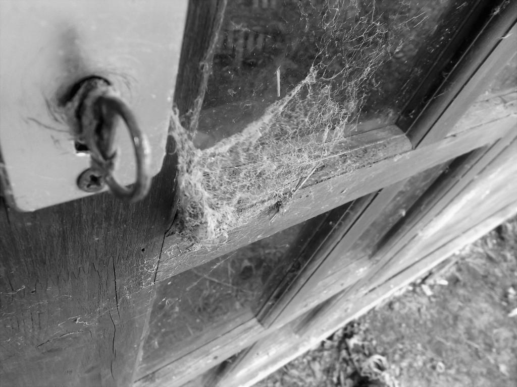 Under lock and key by ajisaac