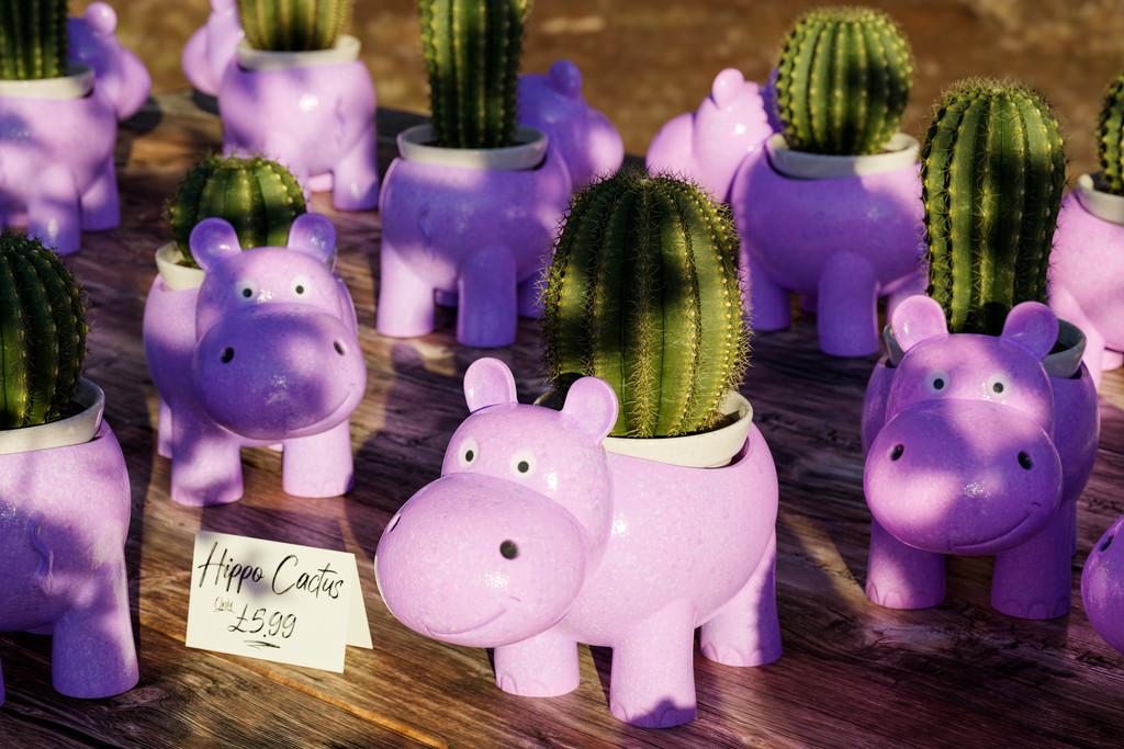 Hippo Cacti by humphreyhippo