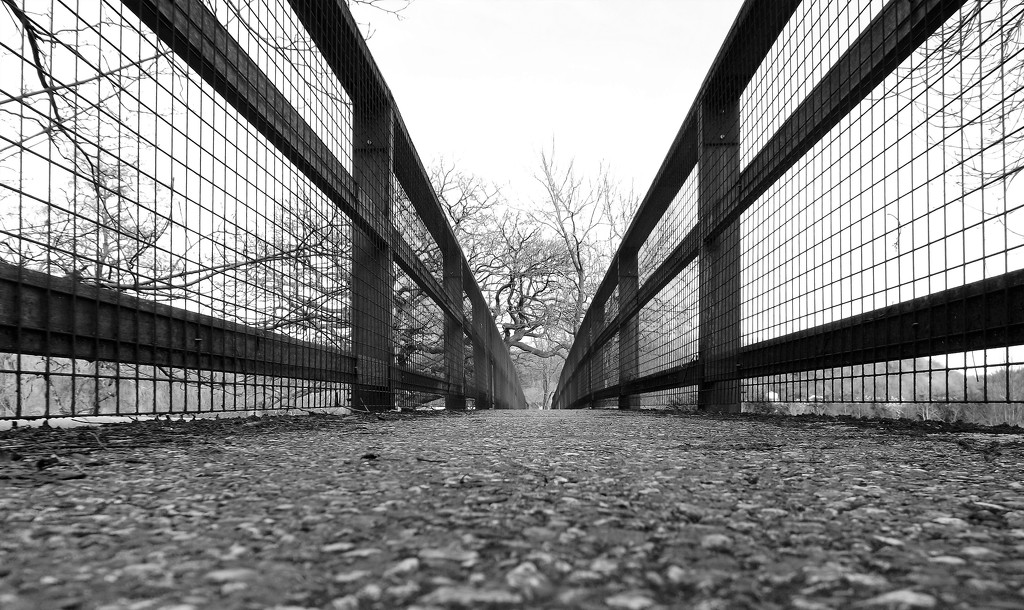 Bridge over two counties by ajisaac
