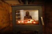 18th Feb 2021 - In flames!