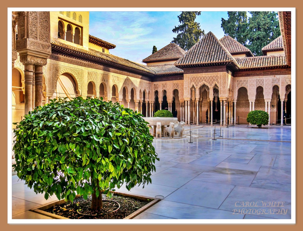 Palace Of The Lions,Alhambra,Granada (filler) by carolmw