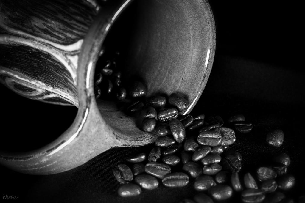 Coffee by novab