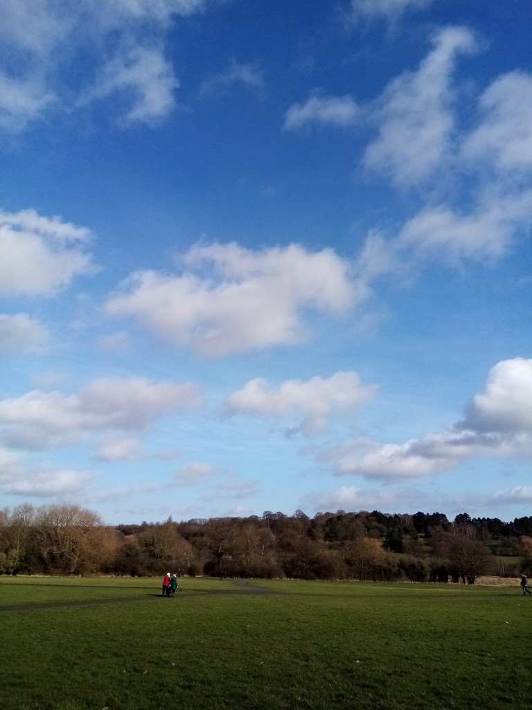 Blue skies over the golf course... by filsie65