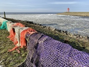 19th Feb 2021 - Wonderful icy waves and colorful nets in the harbour entrance