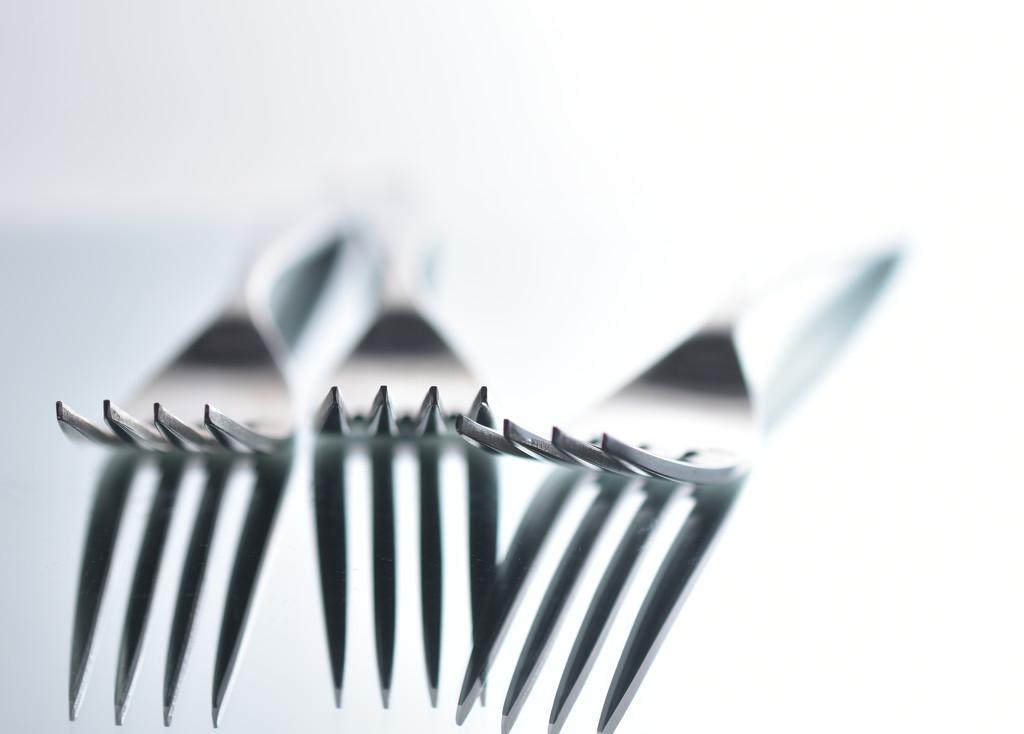 Forks... by jayberg