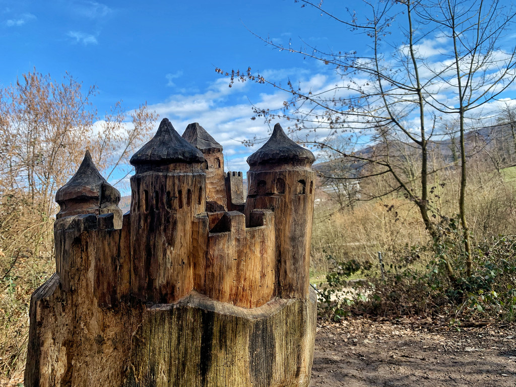 Castle on the wood.  by cocobella