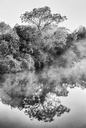 20th Feb 2021 - Foggy Morning at the Lake