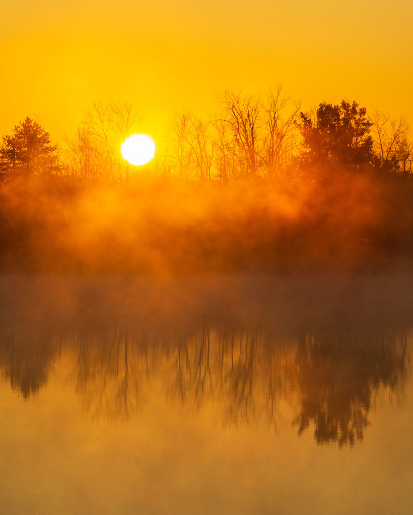 Sunrise in the Fog by photograndma