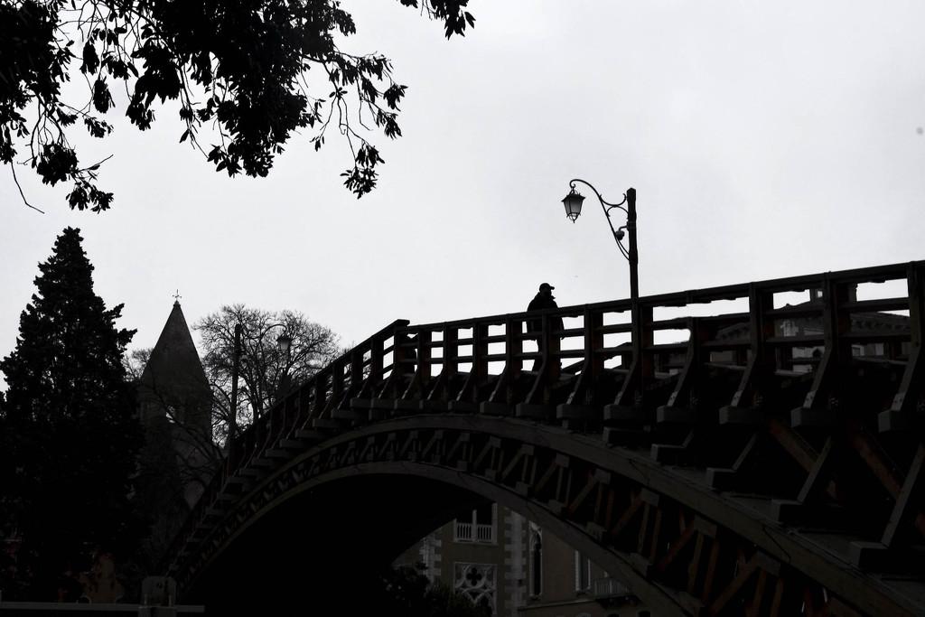 Ponte dell'Accademia by caterina