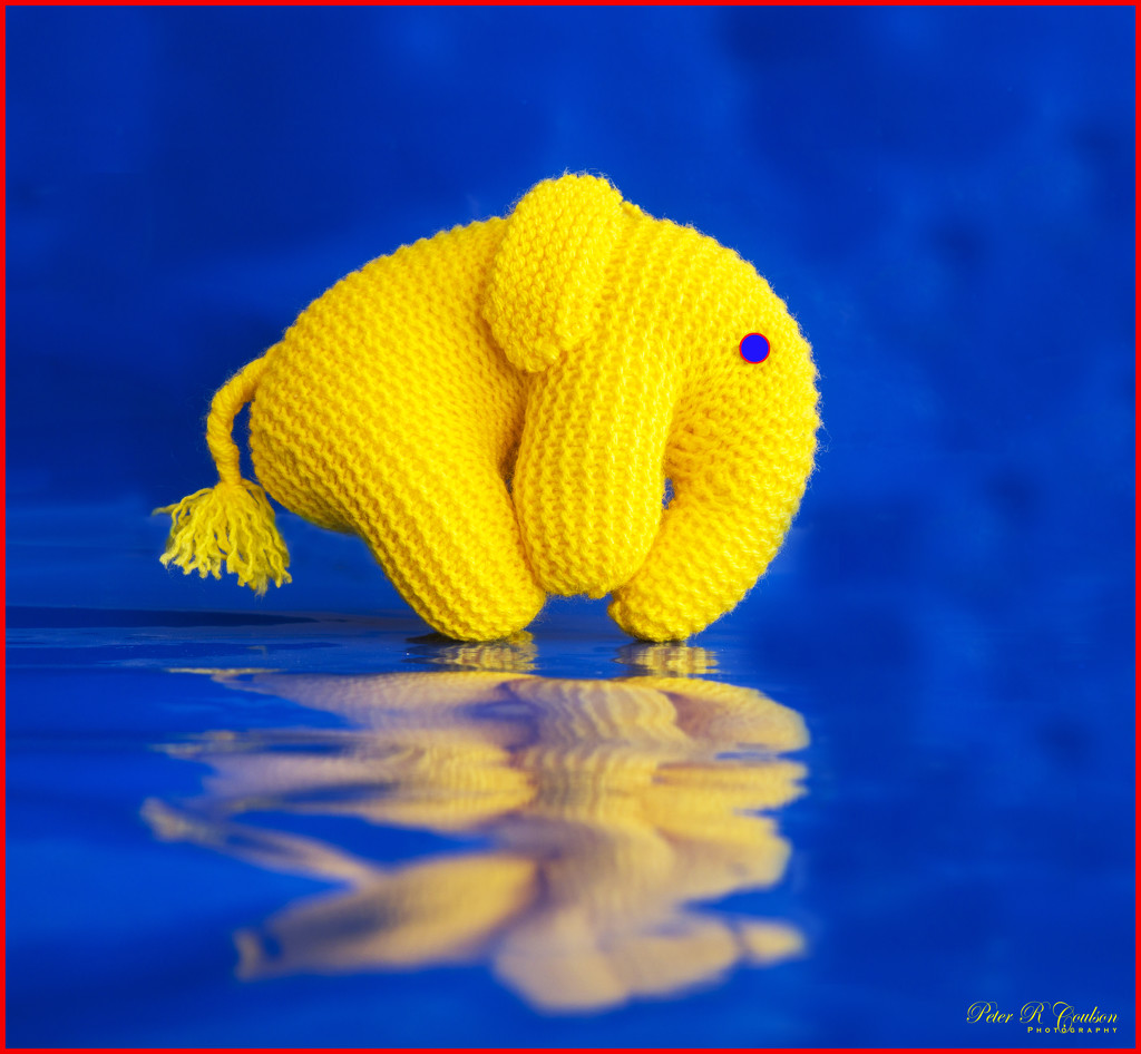 Primary Colour Elephant by pcoulson