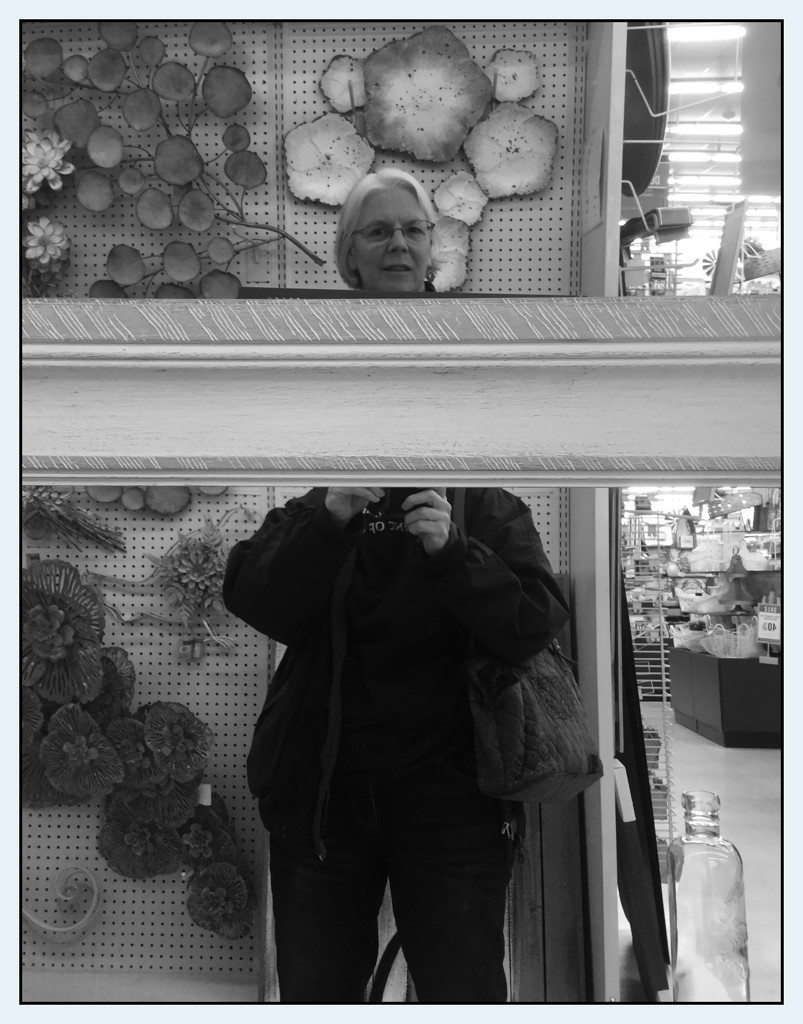 Self Portrait in Hobby Lobby by mcsiegle