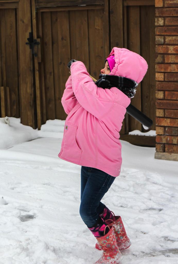Hitting Snow Balls by judyc57