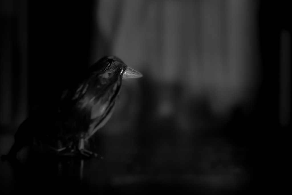 nevermore... by northy