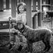 FOR February, Portraits - Piper and Sasha