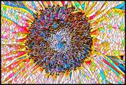 18th Feb 2021 - Sunflower Mosaic