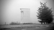 21st Feb 2021 - In fog
