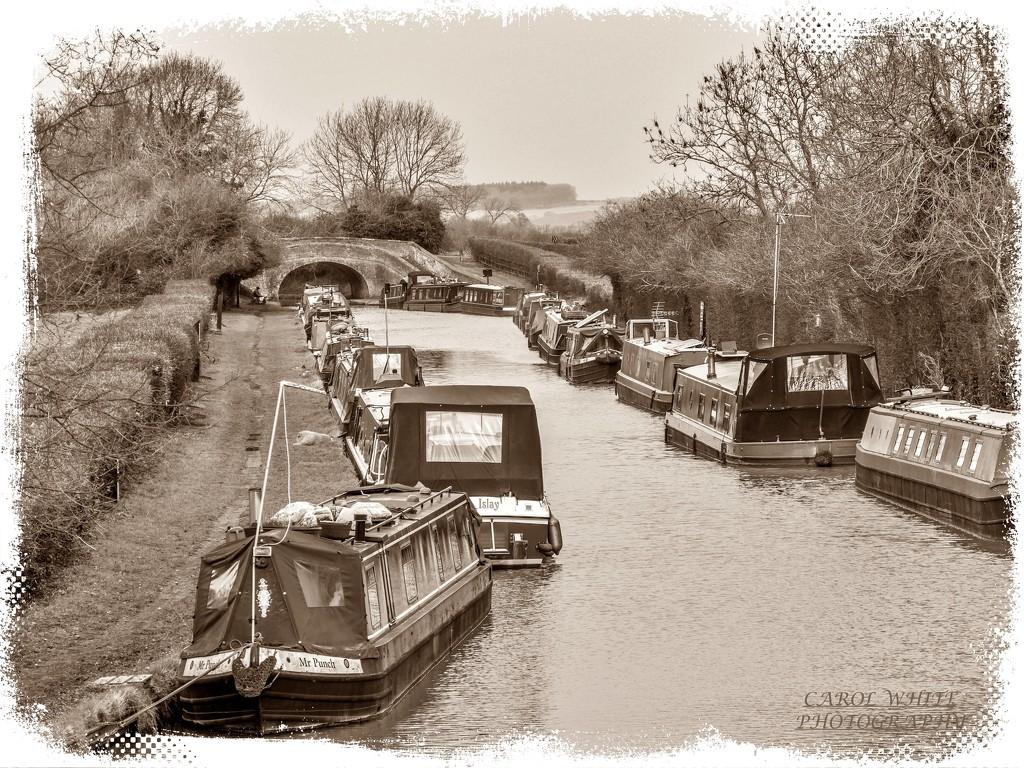 Winter Moorings,The Grand Union Canal,Gayton by carolmw