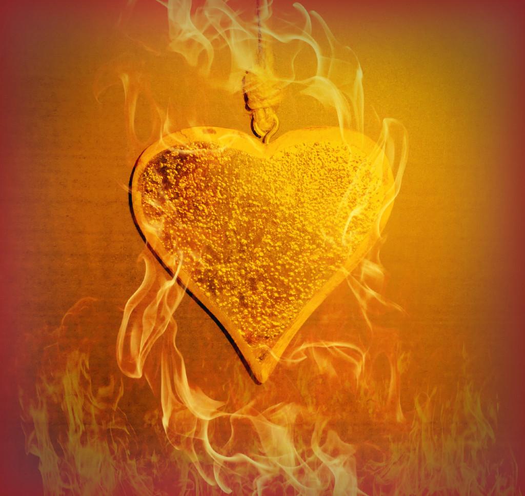 Heart On Fire.  by wendyfrost