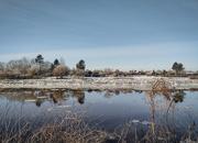 8th Feb 2021 - Weser