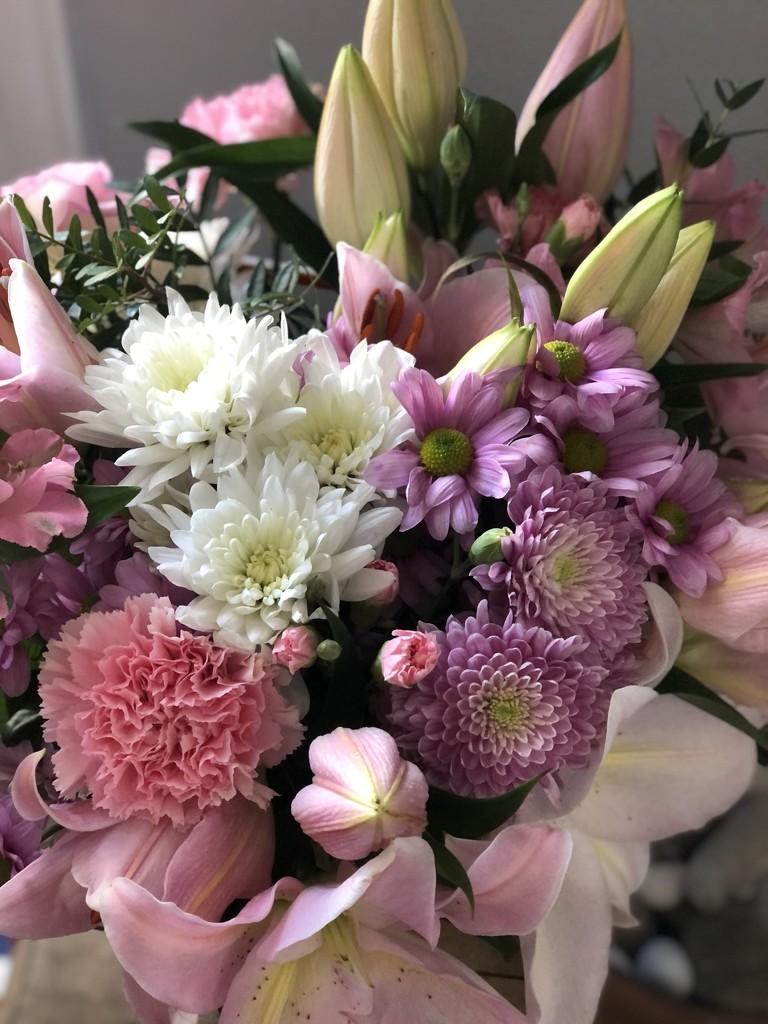 Valentine's Flowers by cookingkaren