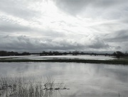 20th Feb 2021 - Rainclouds and floods