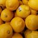 Y12 D052 Lemons