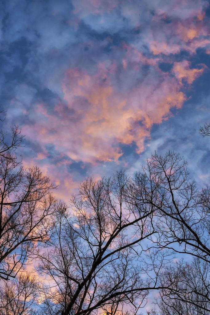 Swirling Sky by kvphoto