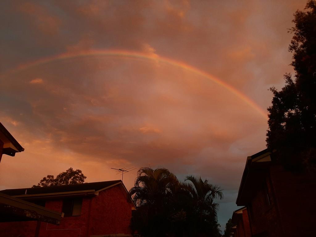 Rainbow  by mozette