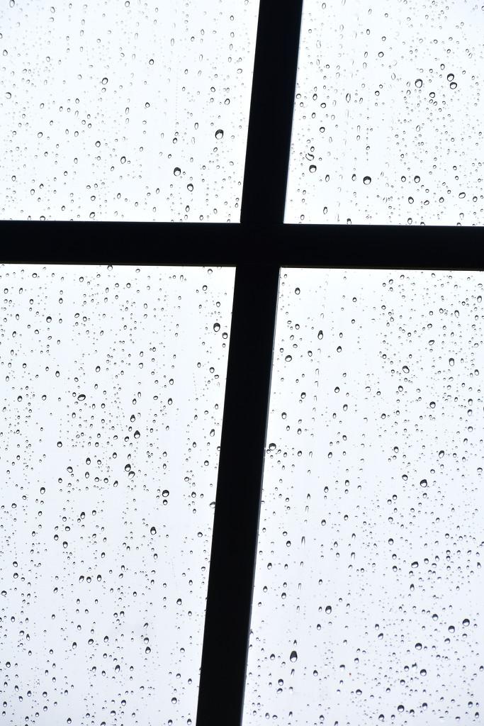Blessings rain down! by homeschoolmom