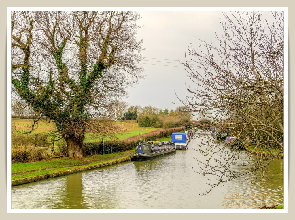The Grand Union Canal,Gayton by carolmw
