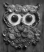 22nd Feb 2021 - Textured Owl
