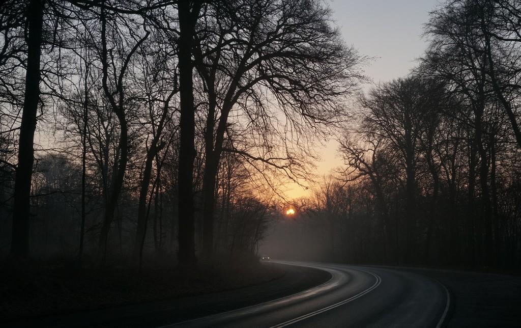 Early morning mist by runner365