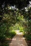 22nd Feb 2021 - Garden of Eve
