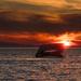 Sunset at the SS Atlantus