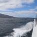 Schouten Island Cruise (6)
