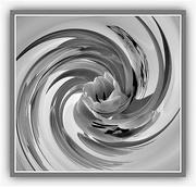 24th Feb 2021 - Into the vortex