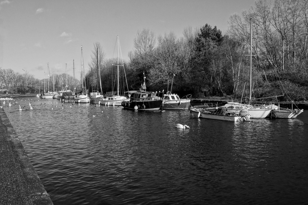 MOORED AT SPIKE ISLAND by markp
